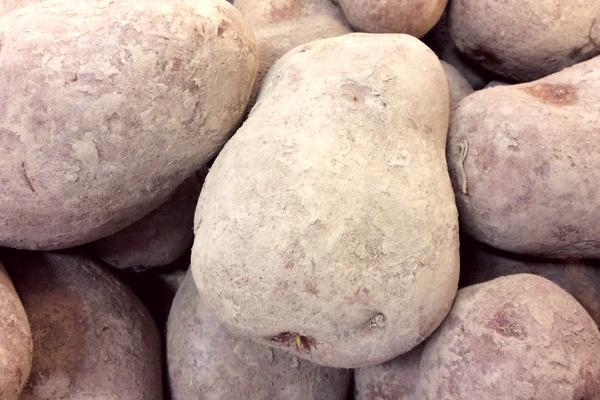 1kg di patate rosse